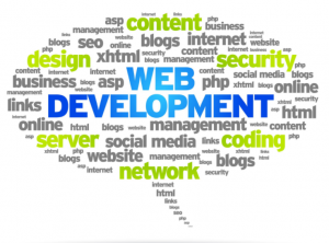 web development1